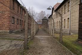 Auschwitz – Ez nem csak 1 utazás lesz
